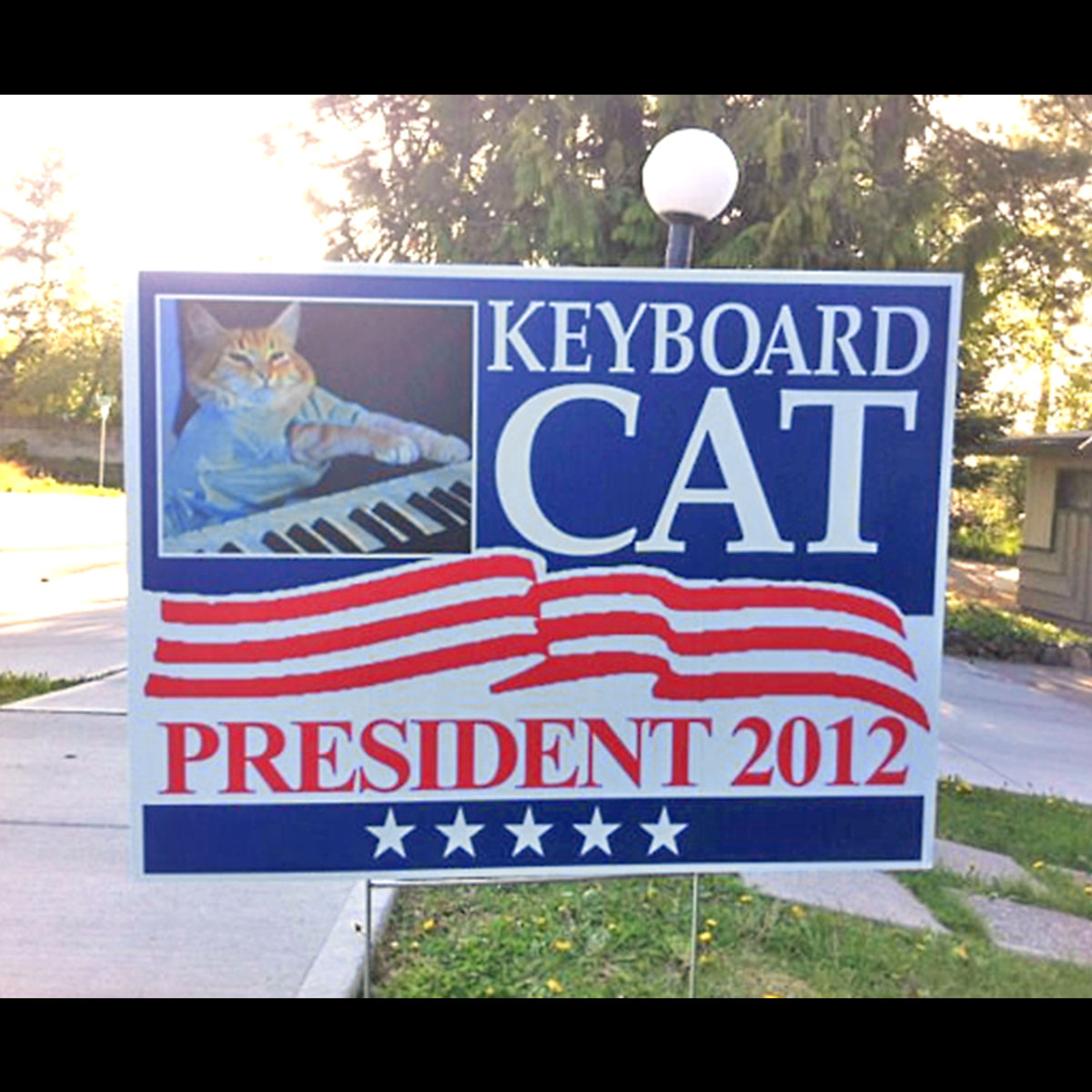 Funny Yard Sign 5