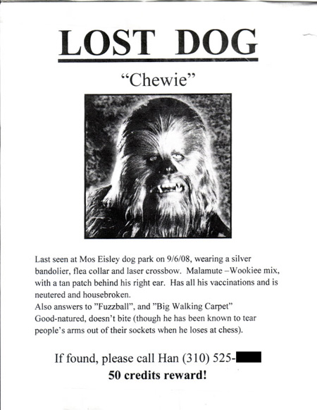 The  Most Awesome LostPet Flyers  Order  Flyers Today