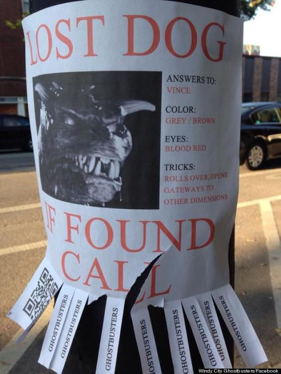 the 10 most awesome lost pet flyers order 5 000 flyers today