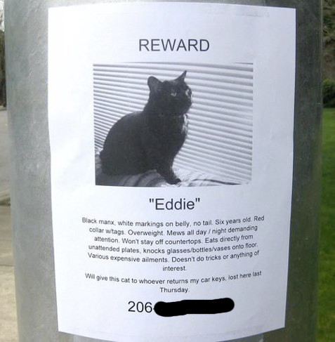 """Funny """"Missing"""" Flyers"""