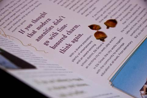 Brochure Designs - 9