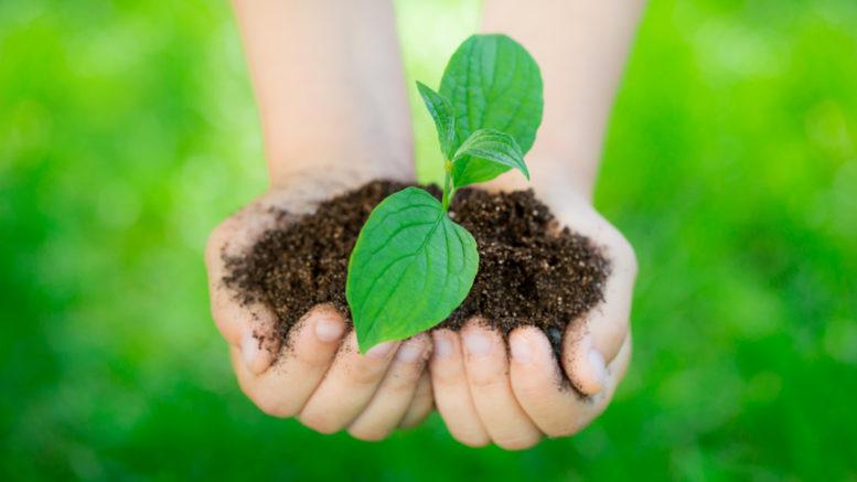 Environmentally aware earth day poster ideas