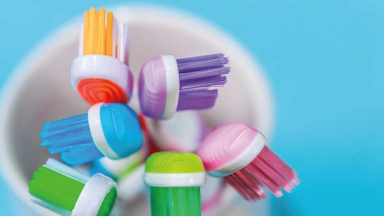 A set of toothbrushes in a cup.