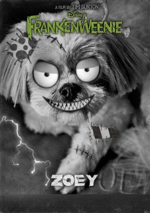 Frankenweenie Zoey by Sarah Ackerman