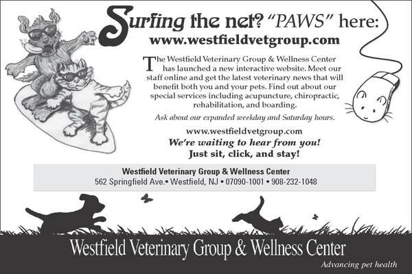 Westfield Veterinary Group & Wellness Center