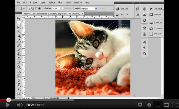 tutorial cs4 Brochure Page