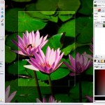 5 Picture-Perfect Photo Editing Software for E-commerce Stores