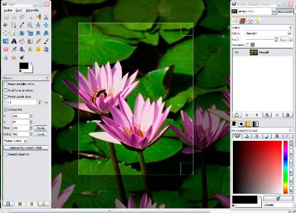 windows_crop