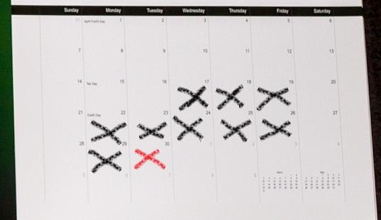 2013 Ladybugs Premium Calendars 11x17