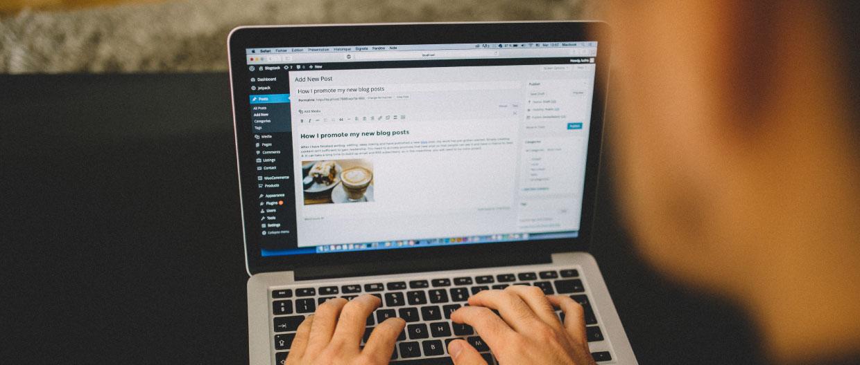 Person using blogging platform WordPress
