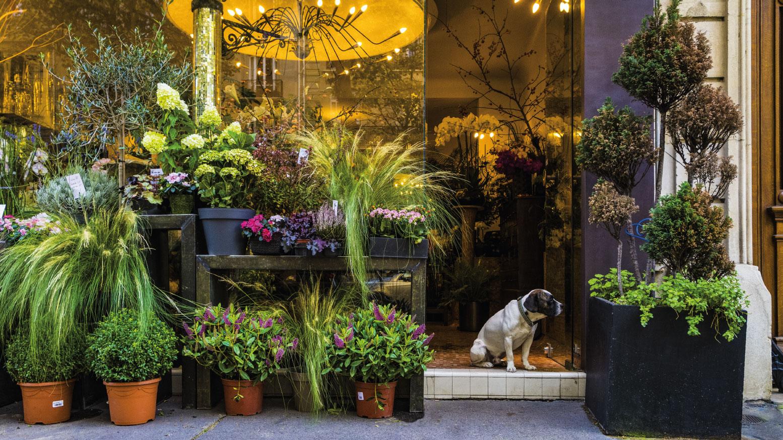 floral shop storefront