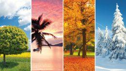 seasonal business tips to survive the off-season