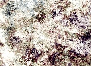 grunge-free-photoshop-brushes-9.jpg