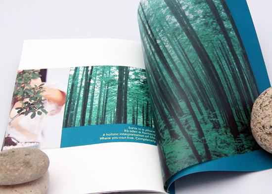 brochure-design-5