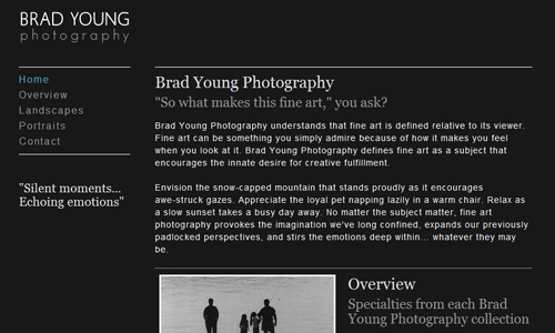 brad young photography