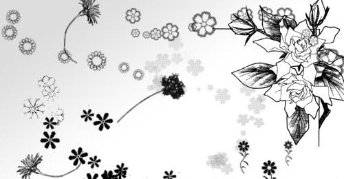 floral photoshop set