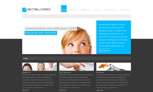 Corporate WordPress Themes - RT-Theme 7