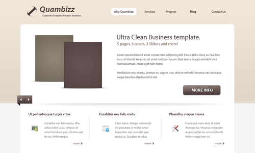Corporate WordPress Themes - Quambizz