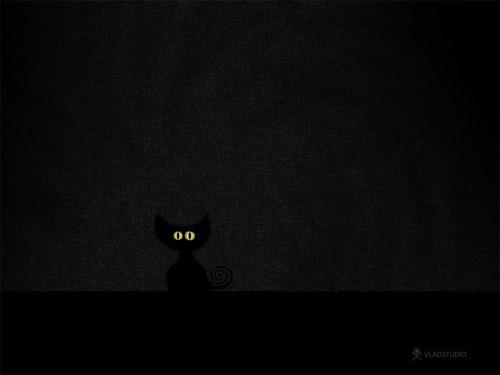 black cat dark wallpaper