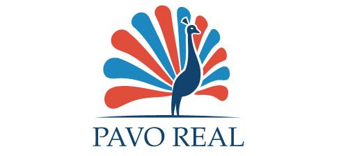 pavo real animal logo design