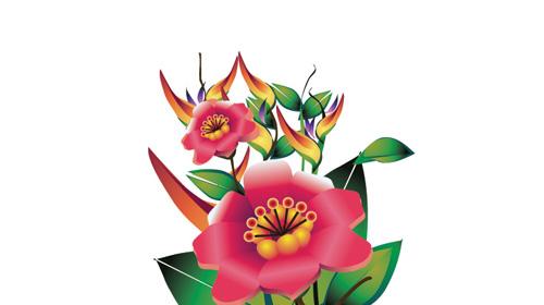 illustrator flowers leaves vector graphics