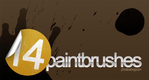14 paint brushes
