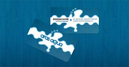 Aras Aqua Business Card