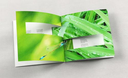 Booklet Designs - Shn Mood Booklet