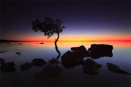Silhouette Photos - IMG 9861 Original