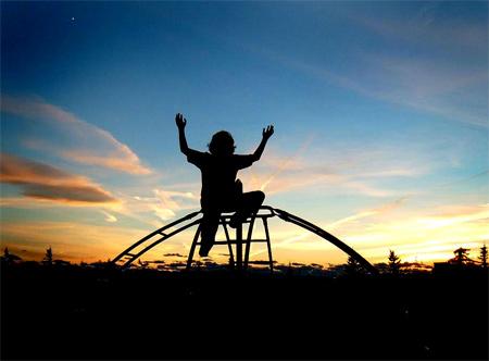 Silhouette Photos - Reach for the Sky