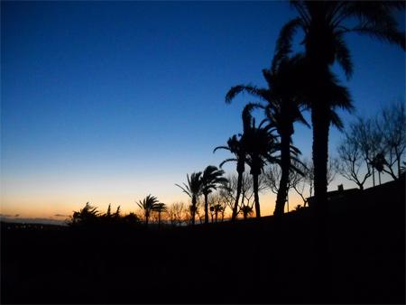 Silhouette Photos - Golden Sunrise