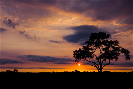 Silhouette Photos - Nkorho Sunrise
