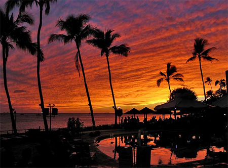 Silhouette Photos - Paradise