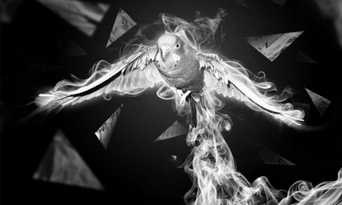 surreal smoking bird