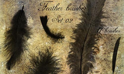 Feather brushes - set 02