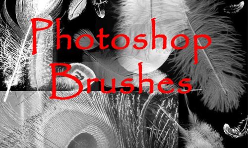 Photoshop FEATHER Brushes