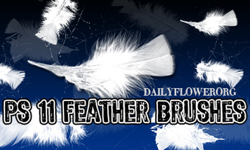 11 feather brushes