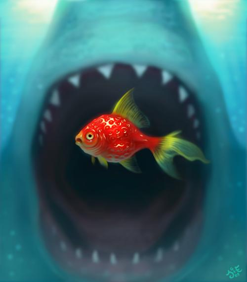 cute-animal-illustrations-02