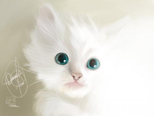 cute-animal-illustrations