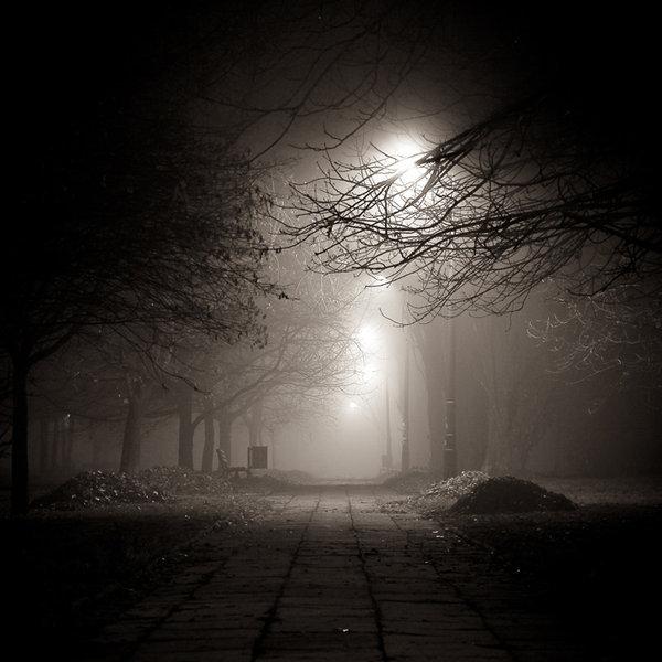 night-photography-04
