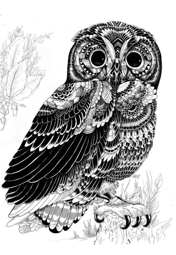 pen-and-ink-illustrations-04