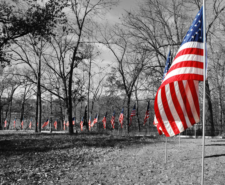 Veterans-Day-Pictures-17