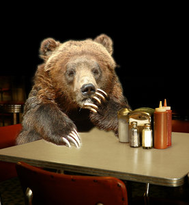 A recent study suggests bears that make a lot of decisions are less likely to make healthy food choices.