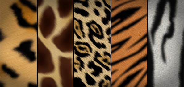 5 animal print patterns free download - Animal Pictures To Print Free
