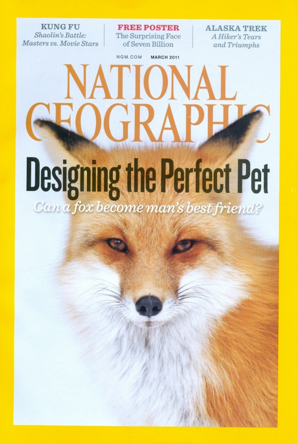 National Geographic March 2011 Issue via YouTheDesigner