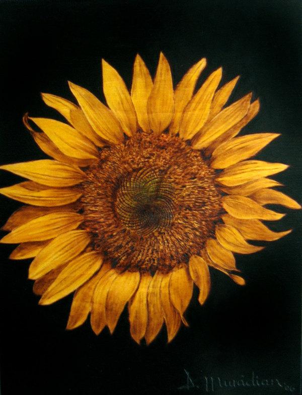 """Sun Friendly"" - pyrography by Muradino"