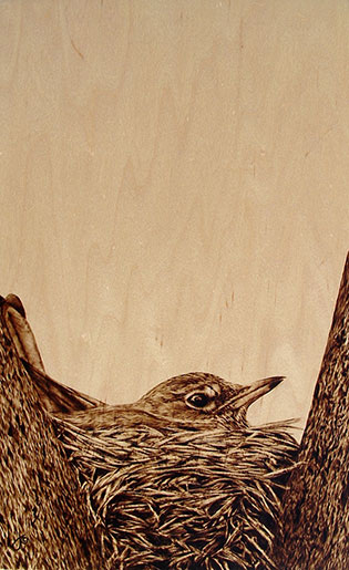 """""""Keeping them Warm"""" - pyrography by Julie Bender"""