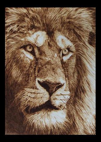 """""""Leone"""" - pyrography by Davide Della Noce"""