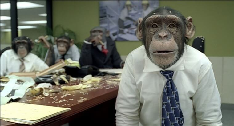 Hands Off That Banana! - How Bad Company Policies Are Made