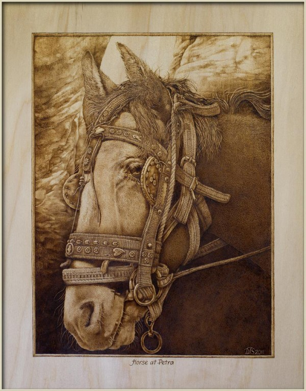 """Horse at Petra"" – pyrography by David Stanley"